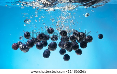 Yummy blueberries being sprinkled into water while isolated on blue - stock photo
