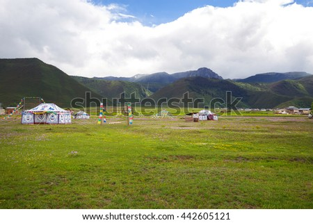 Yurts on the lawn - stock photo