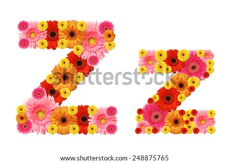 z, flower alphabet - stock photo