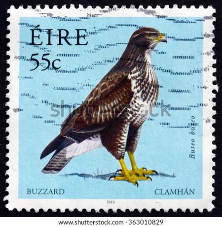 ZAGREB, CROATIA - DECEMBER, 2015: a stamp printed in Ireland shows Common Buzzard, Buteo Buteo, Bird of Prey, circa 2010 - stock photo