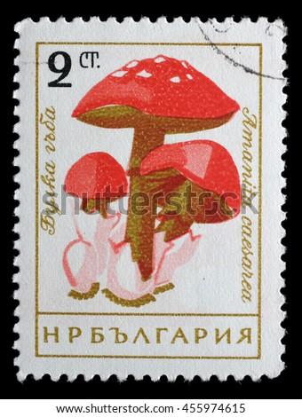 ZAGREB, CROATIA - JUNE 25: a stamp printed in Bulgaria shows Caesars mushroom, Amanita caesarea, circa 1961, on June 25, 2014, Zagreb, Croatia - stock photo