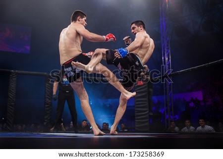 ZAGREB, CROATIA - NOVEMBER 2, 2013: Final fights at Croatian MMA legaue. Anto RADMAN (red gloves) VS Tonci PERUSKO (blue gloves). - stock photo
