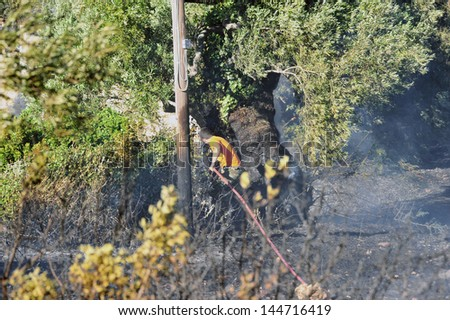 ZAKYNTHOS GREECE JULY 3: Fire department in action at makris gialos small forest close to the sea low scale fire on July 03 2013 in Zakynthos,Greece