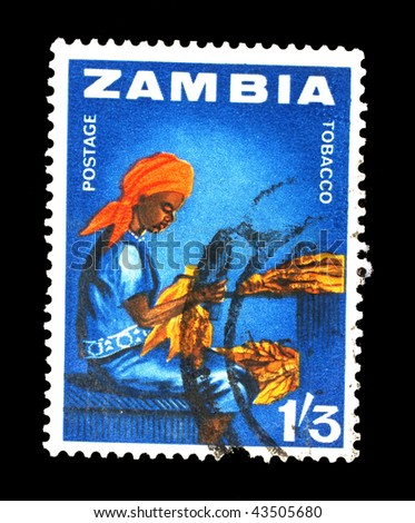 ZAMBIA - CIRCA 1964: A stamp printed in Zambia shows image of a tobacco worker, circa 1964