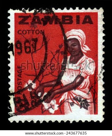 ZAMBIA - CIRCA 1964: a stamp printed in Zambia shows young woman picking cotton, circa 1964 - stock photo