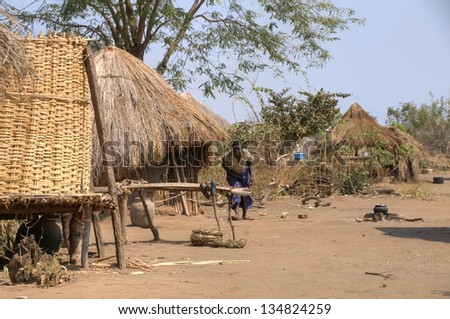 ZAMBIA - MARCH 21: Local village in the South Luangwa National Park March 21, 2013 in Zambia, Africa - stock photo