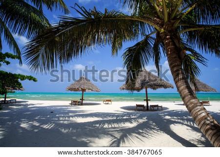 Zanzibar Umbrellas and palm trees on the  Beach  - stock photo