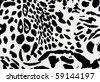 zebra print useful as a background or pattern - stock photo