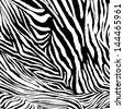 Zebra texture - stock photo