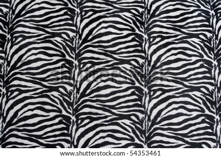 zebra texture - stock photo