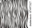 zebra texture Black and White - stock photo