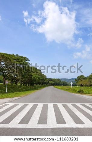 zebra traffic walk way, cross way with blue sky - stock photo