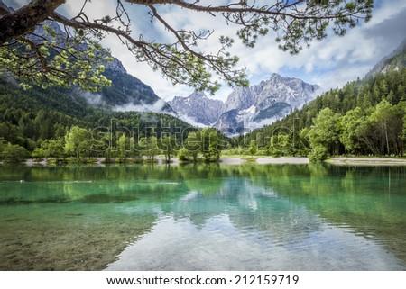 Zelenci pond near Kranjska Gora in Triglav National Park - stock photo