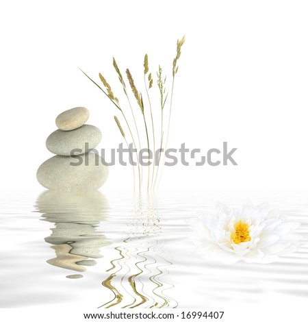 Zen abstract of three natural grey stones balanced on top of each other, wild grasses and a white lotus lily with reflection over rippled water. Over white background. - stock photo