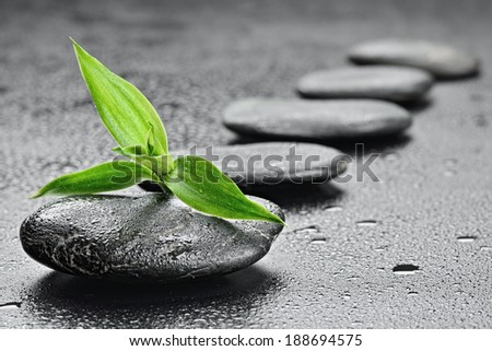 zen basalt stones and bamboo on the black  - stock photo