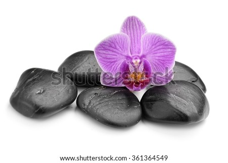 zen basalt stones and orchid  isolated on white - stock photo