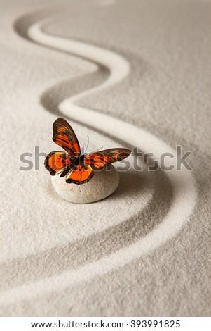Zen butterfly - stock photo