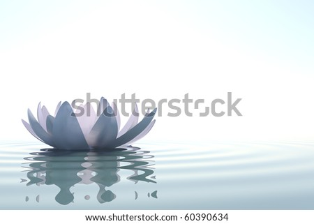 Zen flower loto in water on white background - stock photo