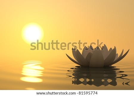 Zen flower lotus into the water with sunset on background - stock photo
