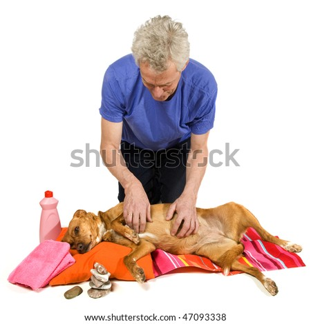 Zen moment and Spa treatment by the dog owner - stock photo
