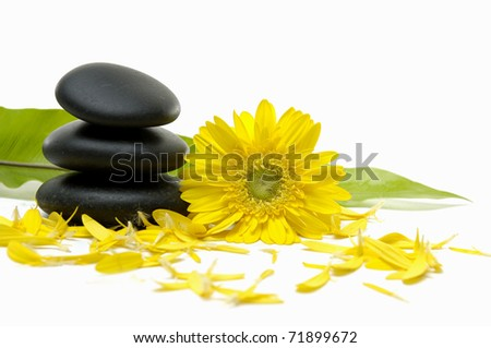 zen pebbles and green banana leaf with flower petals - stock photo