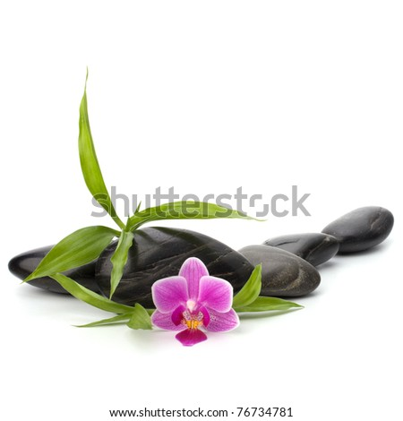 Zen pebbles path. Spa and healthcare concept. - stock photo