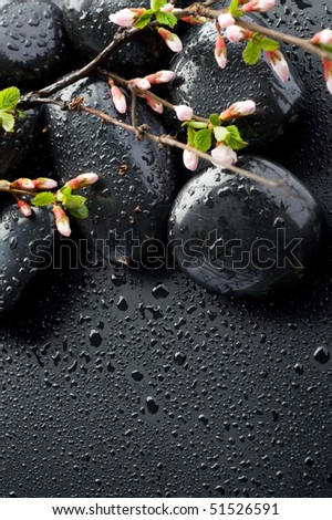 Zen Spa Stones and Spring Blossom - stock photo