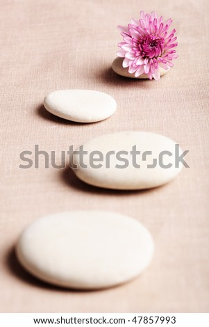 Zen stone curving Line and flower - stock photo