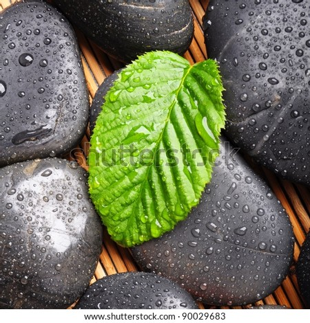 zen stone with green leaf or water drops showing spa or wellness concept - stock photo