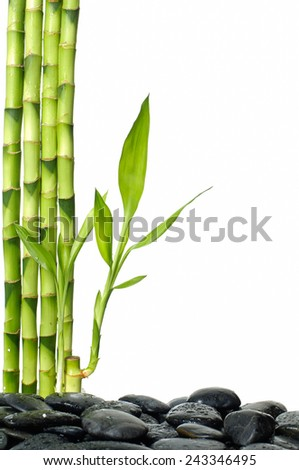 zen stones and bamboo leaves on the white - stock photo