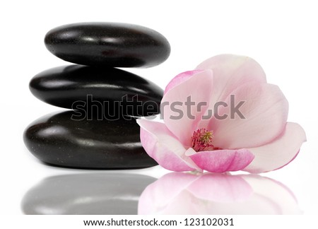 Zen stones and beautifl magnolia flower, white background