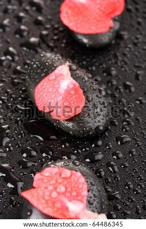 zen stones and flower petals - stock photo