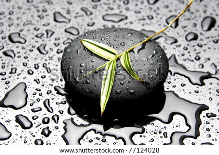 zen stones and green long leaf with water drops - stock photo