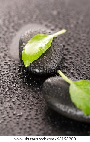 zen stones and leaves with water drops - stock photo