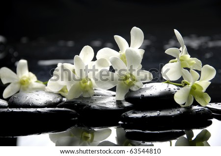 Zen stones and pink orchids with reflection - stock photo