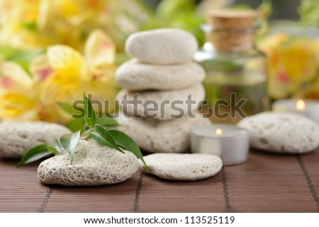 zen  stones and plants on the wooden mat - stock photo