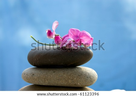 Zen stones with a pink flower on a background of blue sky - stock photo