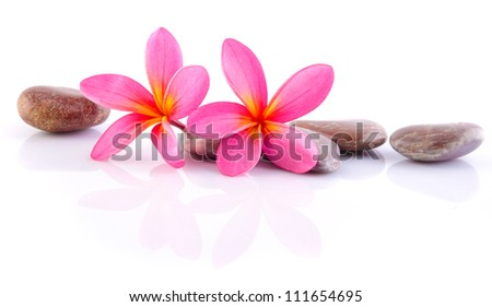 zen stones with frangipani - stock photo