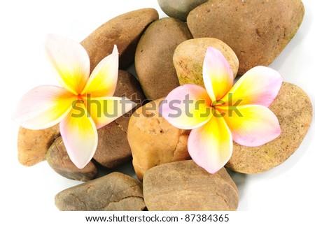 zen stones with frangipani flower on white towel - stock photo