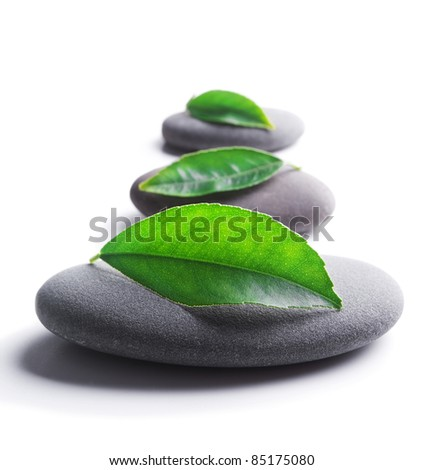 zen stones with leaves on white background. Shallow DOF - stock photo