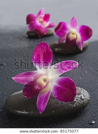 zen stones with orchid flowers on black background. Shallow DOF - stock photo