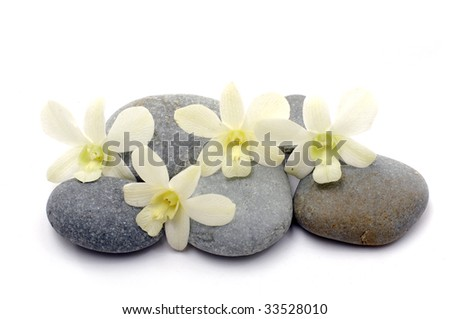 Zen stones with white orchid