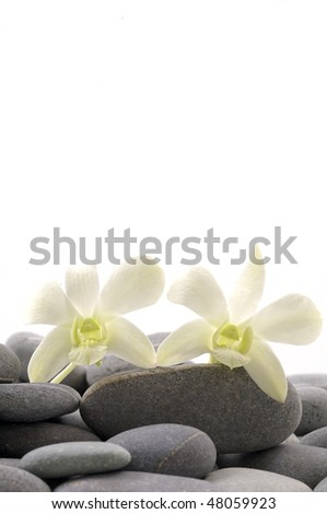 Zen stones with white orchid with copy place