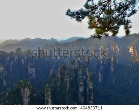 Zhangjiajie â??Avatarâ?? mountains in Hunan province in China.  - stock photo