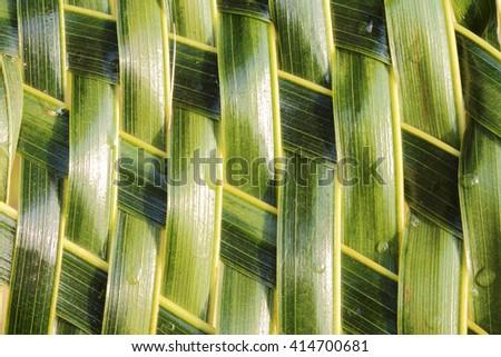 Zigzag interlocking of coconut leaves weave - stock photo
