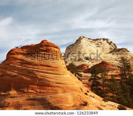 Zion national park - stock photo