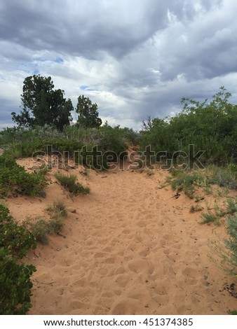 Zion national parks - stock photo