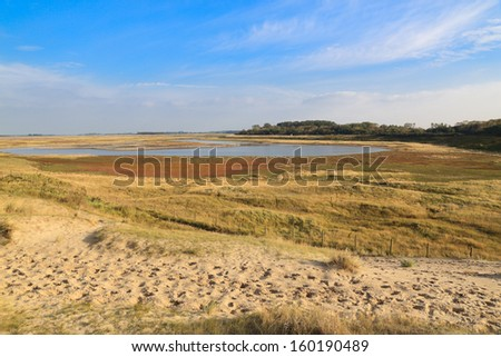 Zwin natural parc in Belgium. Sunset light, blue sky with white clouds. nobody - stock photo