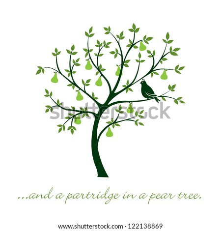 """""""...and a partridge in a pear tree"""" Christmas card in vector format. - stock vector"""