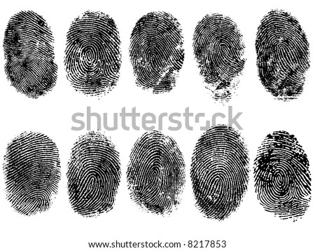 10 Black and White Vector Fingerprints - Very accurately scanned and traced ( Vector is transparent so it can be overlaid on other images, vectors etc.) - stock vector